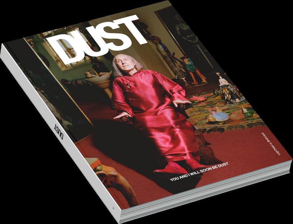 dust 16 luigi