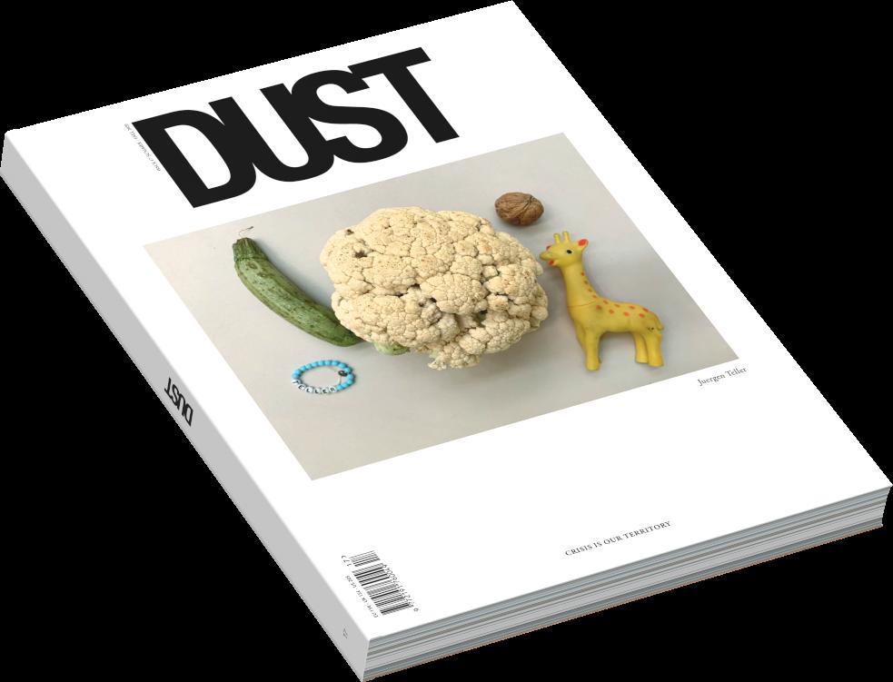 dust 17 teller